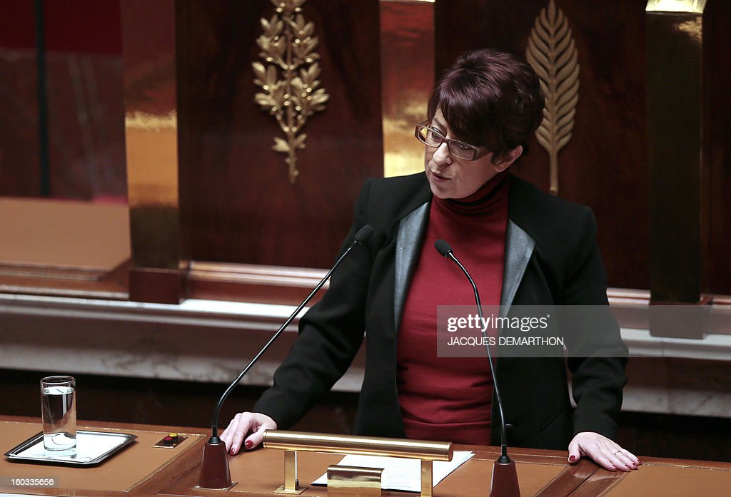 French left wing Socialist Party (SRC) MP Catherine Lemorton delivers a speech at the National Assembly on January 29, 2013 in Paris. The French National Assembly is due to begin a marathon debate on legalising same-sex marriage after months of public protests and counter-protests.