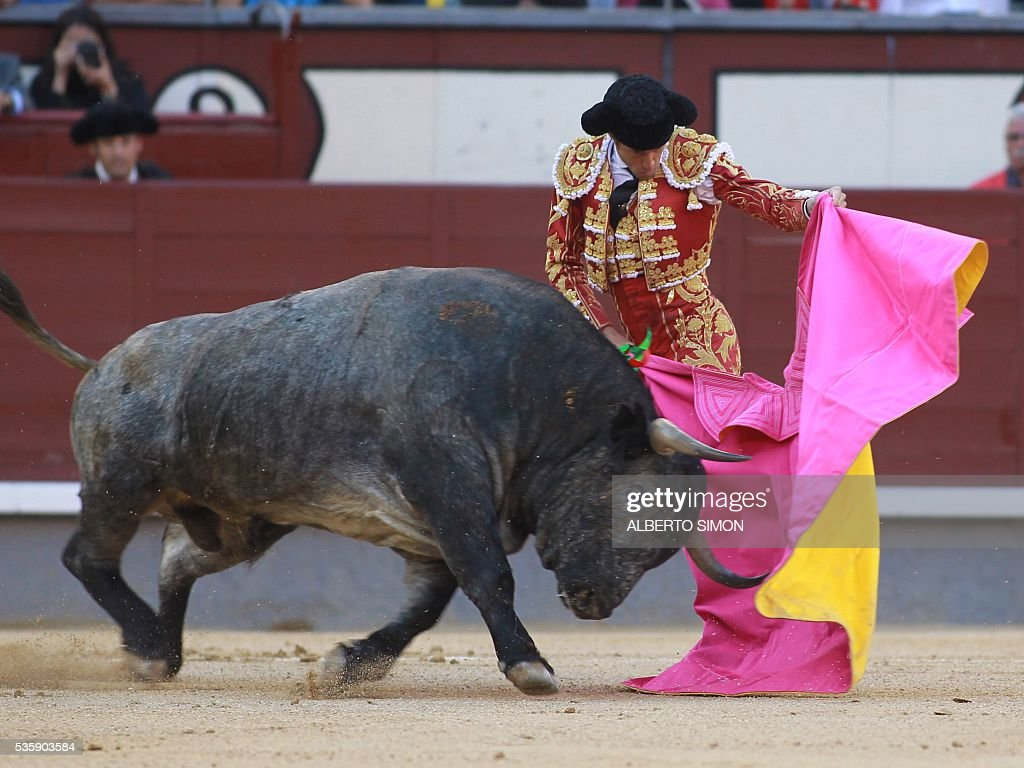 French matador Sebastian Castella performs a pass on a bull during the San Isidro bullfight festival at Las Ventas bullring in Madrid on May 30, 2016. / AFP / ALBERTO