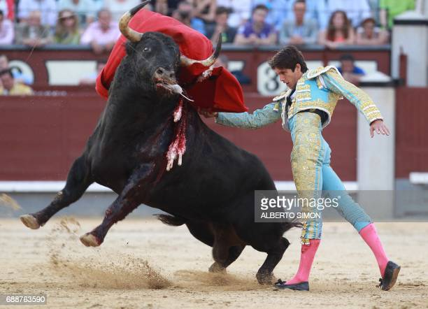 French matador Sebastian Castella performs a pass on a bull during the San Isidro bullfight festival at Las Ventas bullring in Madrid on May 26 2017...