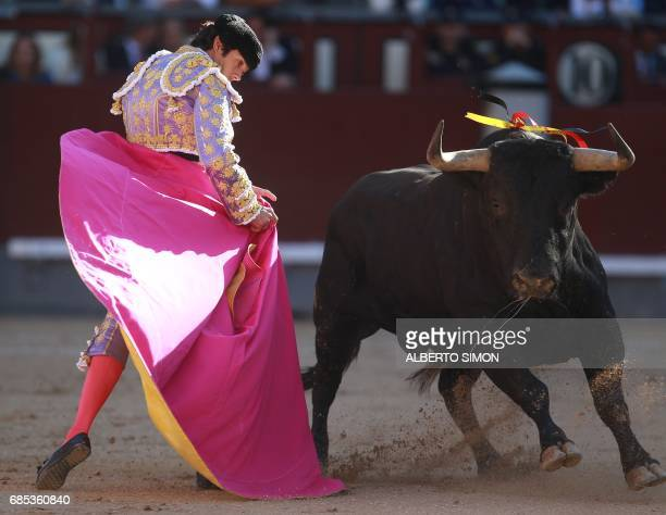 French matador Sebastian Castella performs a pass on a bull with capote during the San Isidro bullfight festival at Las Ventas bullring in Madrid on...