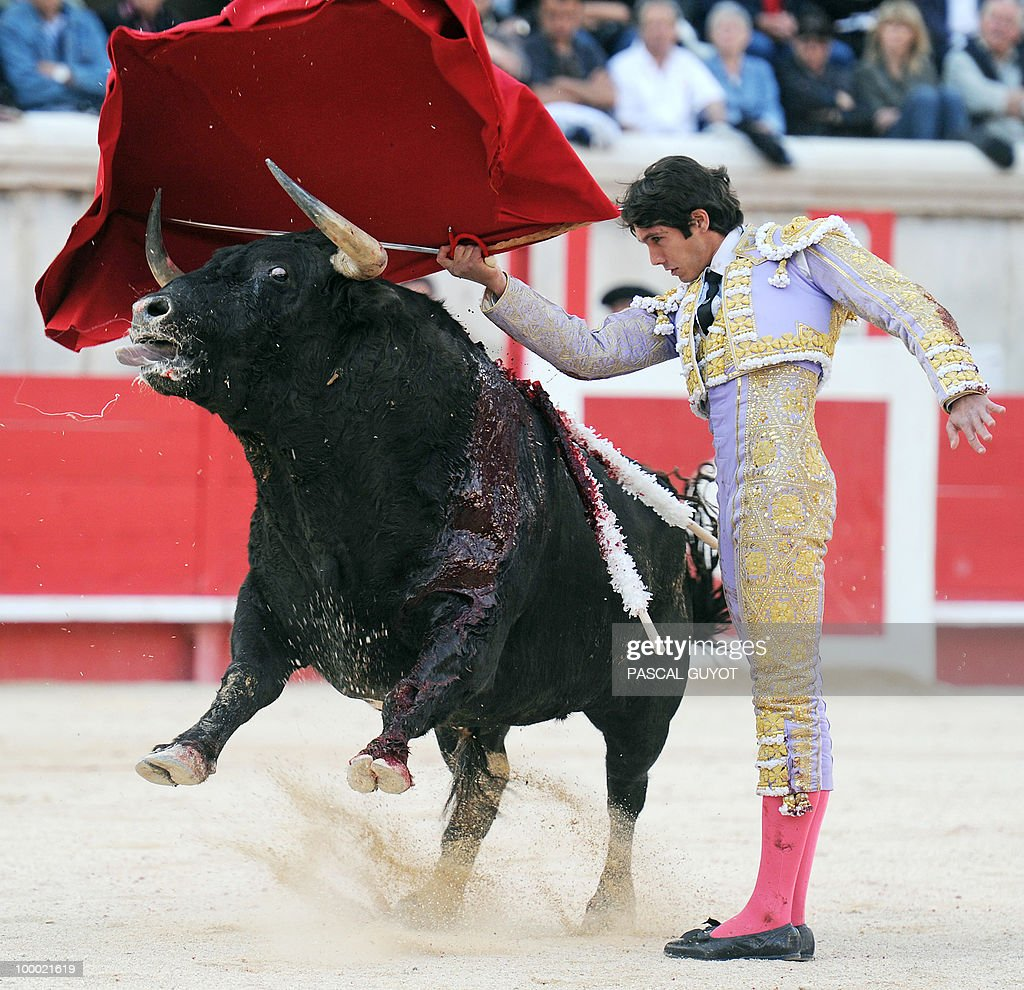 French matador Sebastien Castella performs a muleta on a Nunez del Cuvillo bull, on May 20, 2010, during the Nimes Feria Bullfighting Festival (Feria de la Pentecote).