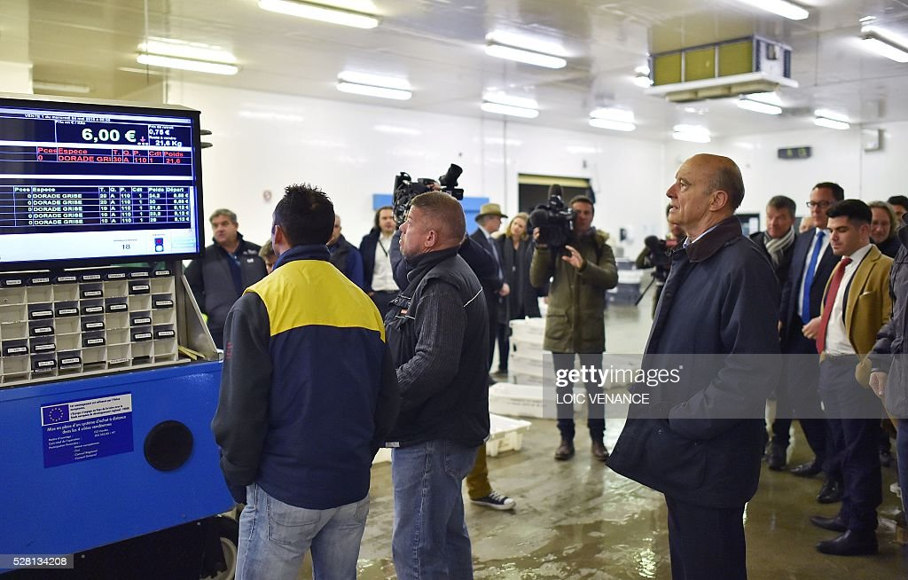 French mayor of Bordeaux and candidate for the right-wing Les Republicains (The Republicans) presidential primary Alain Juppe attends a fish sale auction during a visit to Saint-Gilles-Croix-de-Vie, western France, on May 4, 2016. / AFP / LOIC