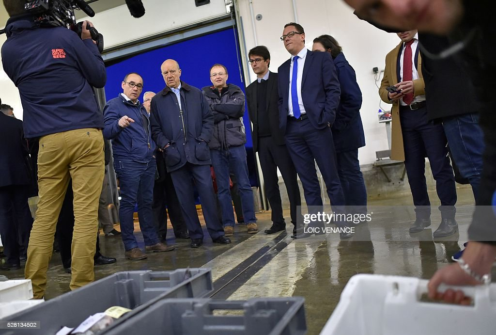 French mayor of Bordeaux and candidate for the right-wing Les Republicains (The Republicans) presidential primary Alain Juppe (C) attends a fish sale auction during a visit to Saint-Gilles-Croix-de-Vie, western France, on May 4, 2016. / AFP / LOIC