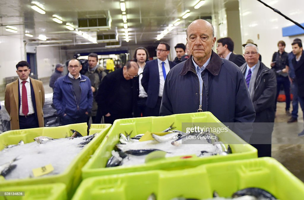 French mayor of Bordeaux and candidate for the right-wing Les Republicains (The Republicans) presidential primary Alain Juppe (R) attends a fish sale auction during a visit to Saint-Gilles-Croix-de-Vie, western France, on May 4, 2016. / AFP / LOIC