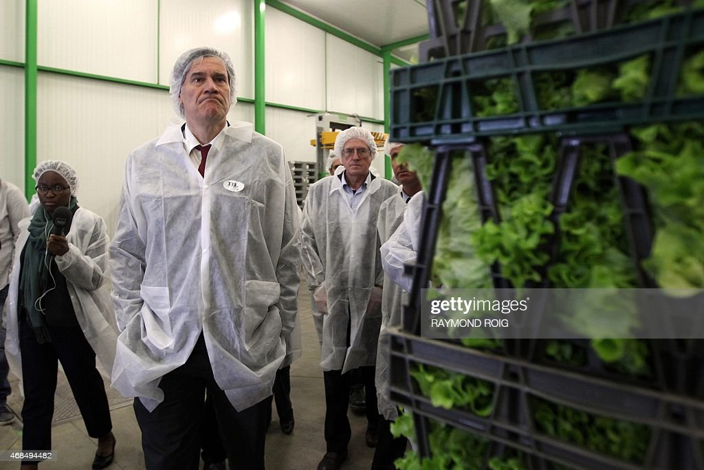 French Minister of Agriculture Stephane Le Foll visits the market garden cooperative Terraneo in Saint-Hippolyte on Avril 3, 2015.