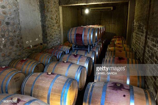 French oak barrels house Malbec wine part of the Luminis winery project in the district of Perdriel Lujan de Cuyo Mendoza Argentina on January 23...