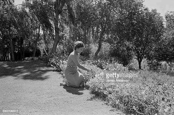 French politician Simone Veil in the garden at home in Sainte Maxime France 10 August 1974