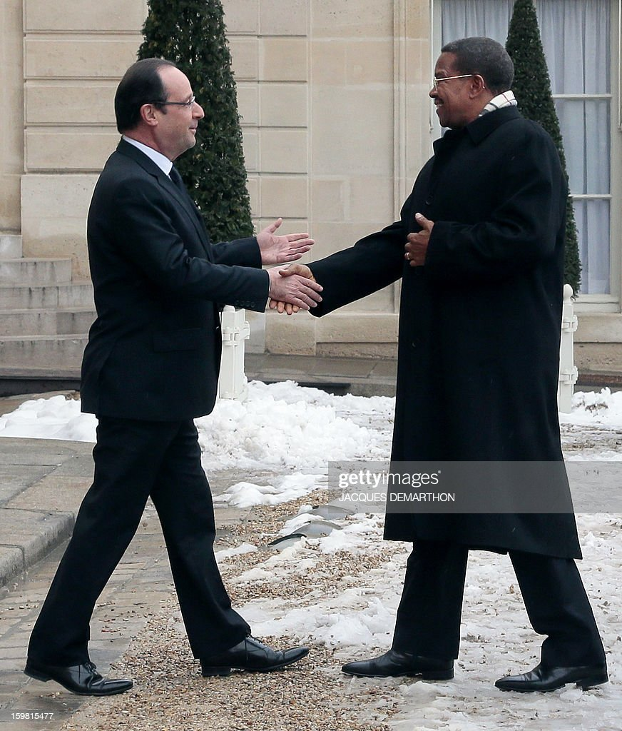 French President Francois Hollande (L) welcomes Tanzanian President Jakaya Kikwete (R) prior a meeting at the presidential Elysee Palace on January 21, 2013 in Paris.