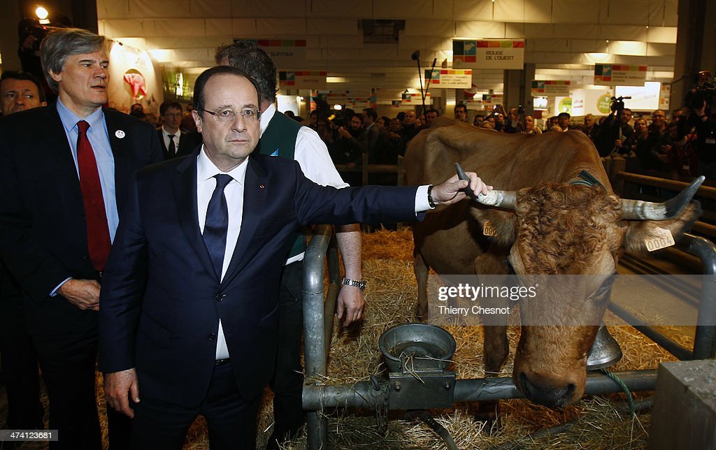 French President Francois Hollande with French Agriculture Minister Stephane Le Foll (L) holds the horn of a cow named 'Bella 7 hold' during a visit of the Paris international agricultural fair at the Porte de Versailles exhibition centre on February 22, 2014, in Paris, France. International agricultural fair opens from February 22 until March 2, 2014.