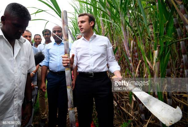 TOPSHOT French presidential election candidate for the En Marche movement Emmanuel Macron cuts a bamboo stem with a machete during his visit of a...