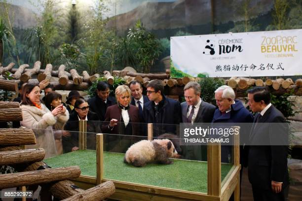 French president's wife Brigitte Macron Chinese Vice Foreign minister Zhang Yesui former French prime minister JeanPierre Raffarin French Junior...