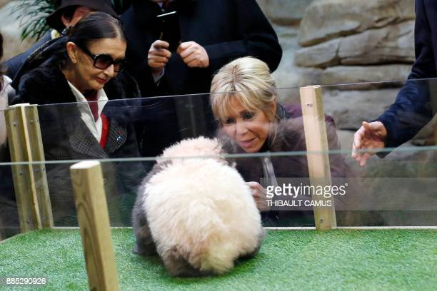 French president's wife Brigitte Macron looks at panda cub Yuan Meng which was born at the Beauval zoo next to its founder Francoise Delord during...