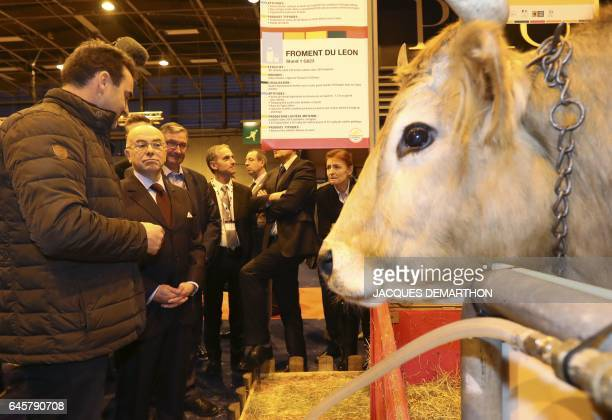 French Prime Minister Bernard Cazeneuve listens to the explanations of a cattle farmer next to a cow during a visit at the Agriculture Fair on...