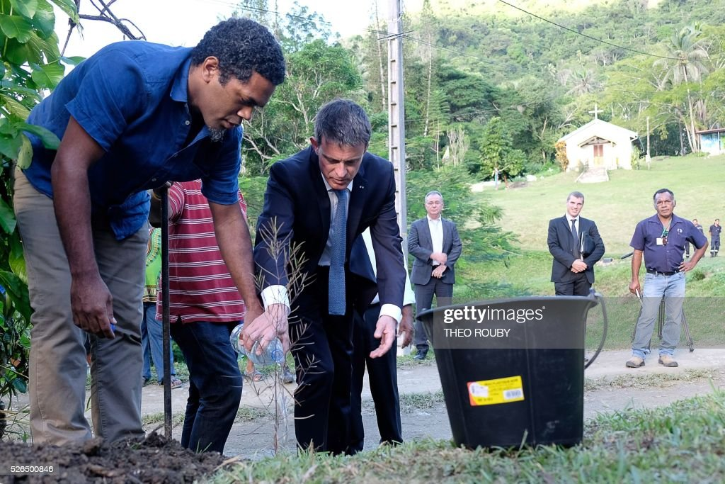 French Prime Minister Manuel Valls (C) plants a sandalwood tree, as per custom for each official visit, in Tiendanite, near Hienghene, as part of his visit to the French Pacific territory of New Caledonia, on April 30, 2016. / AFP / Th��o Rouby
