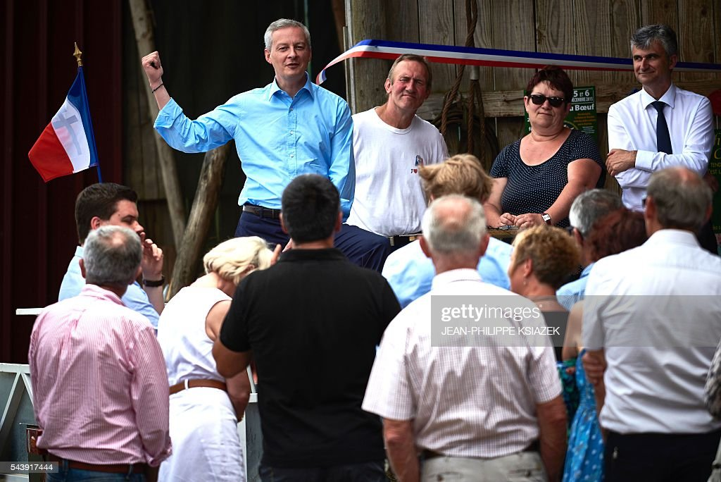 French right-wing Les Republicains (LR) party MP and candidate for the party's primary for the 2017 presidential elections, Bruno Le Maire, gestures as he pays a visit to farmers and producers of Charolais cattle, in Vendenesse-les-Charolles on June 30, 2016. / AFP / JEAN