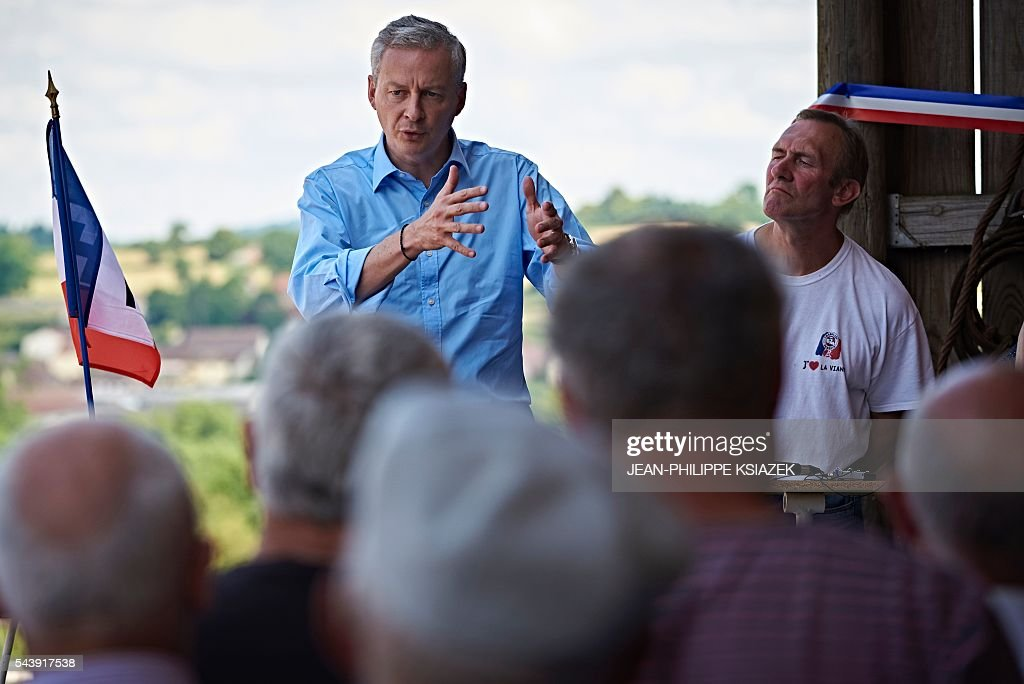 French right-wing Les Republicains (LR) party MP and candidate for the party's primary for the 2017 presidential elections, Bruno Le Maire, gestures as he speaks to farmers and producers of Charolais cattle, in Vendenesse-les-Charolles on June 30, 2016. / AFP / JEAN