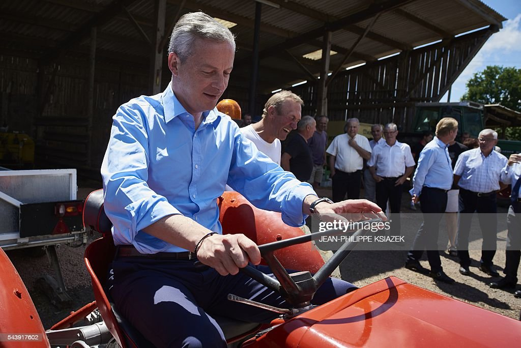 French right-wing Les Republicains (LR) party MP and candidate for the party's primary for the 2017 presidential elections, Bruno Le Maire, drives a tractor as he pays a visit to farmers and producers of Charolais cattle, in Vendenesse-les-Charolles on June 30, 2016. / AFP / JEAN