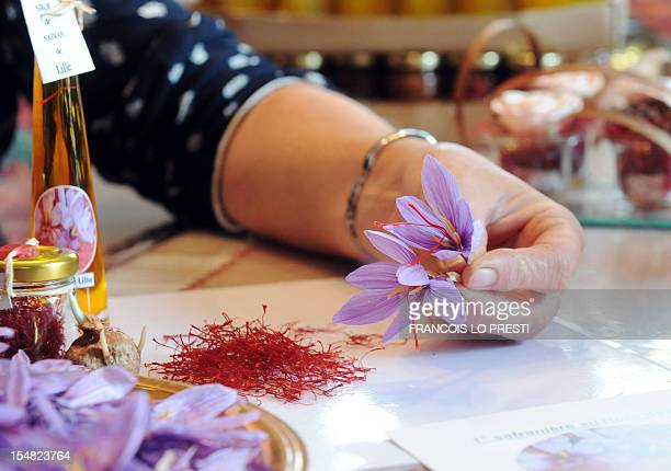 French saffron grower Jacqueline Mille shows on October 25 her production of saffron flowers she grows with her husband in EnnetieresenWeppes near...