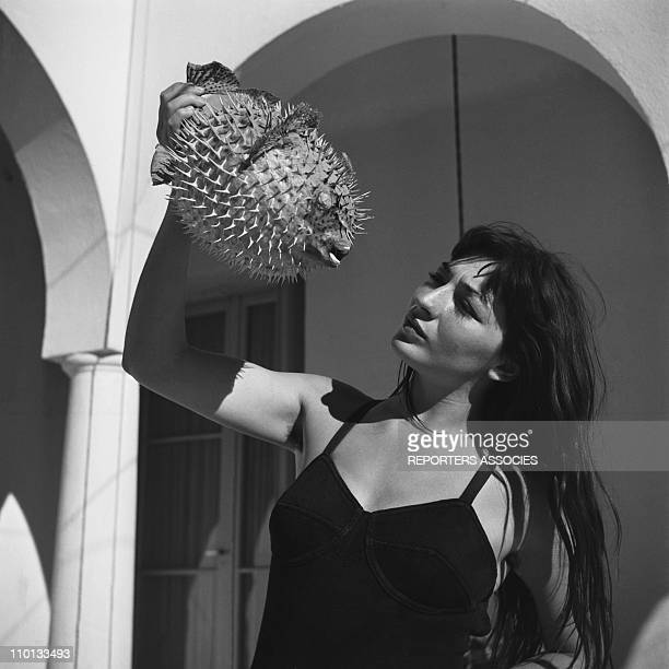 French singer Juliette Greco on holidays in the 1950s