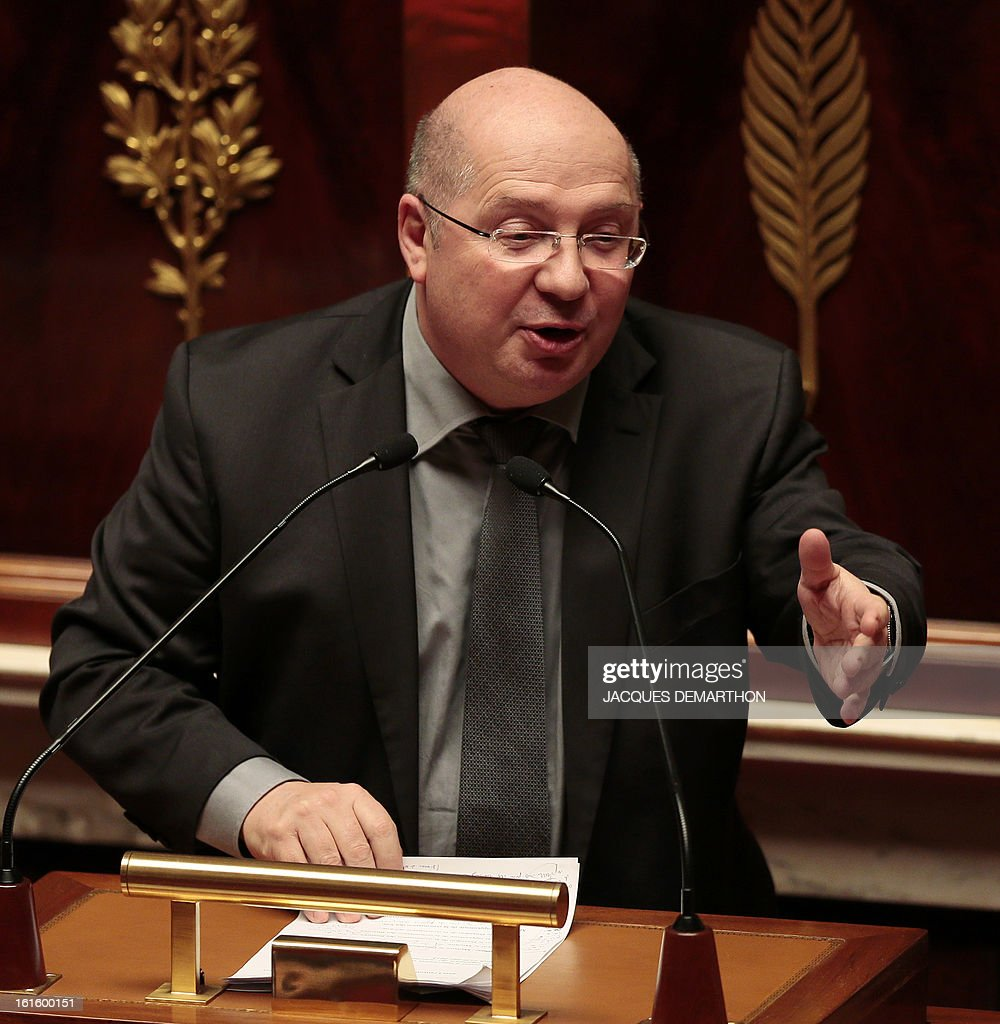 French Socialist Party (PS) MP and President of the Economic Affairs Committee, Francois Brottes speaks during a debate upon a bill on separation and regulation of banking activities on February 12, 2013 at the French National Assembly in Paris.