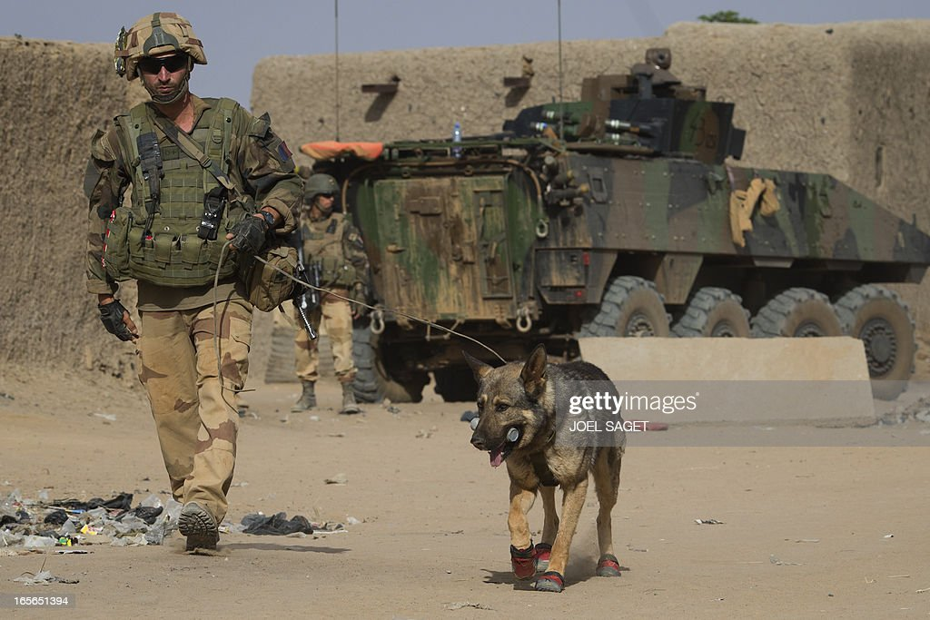 A French soldier patrols with Kappa a bomb snifing dog in a street of Gao on April 5 2013 The United Nations expressed concern over reprisal attacks...