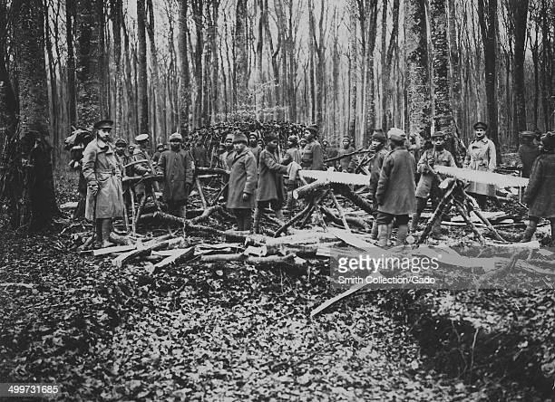 French soldiers local natives and British soldiers with twoman saws sawing lumber for conversion into charcoal for use in the trenches in the woods...