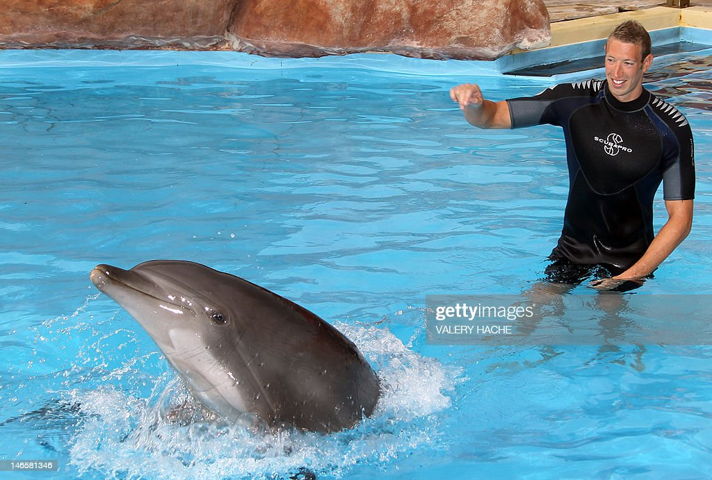 French swimmer Alain Bernard plays with a dolphin after swiming with these animals at Marineland, an animal exhibition park, on June 20, 2012 in Antibes, southern France. Alain Bernard is qualified for the 2012 Summer Olympic Games in London next July.