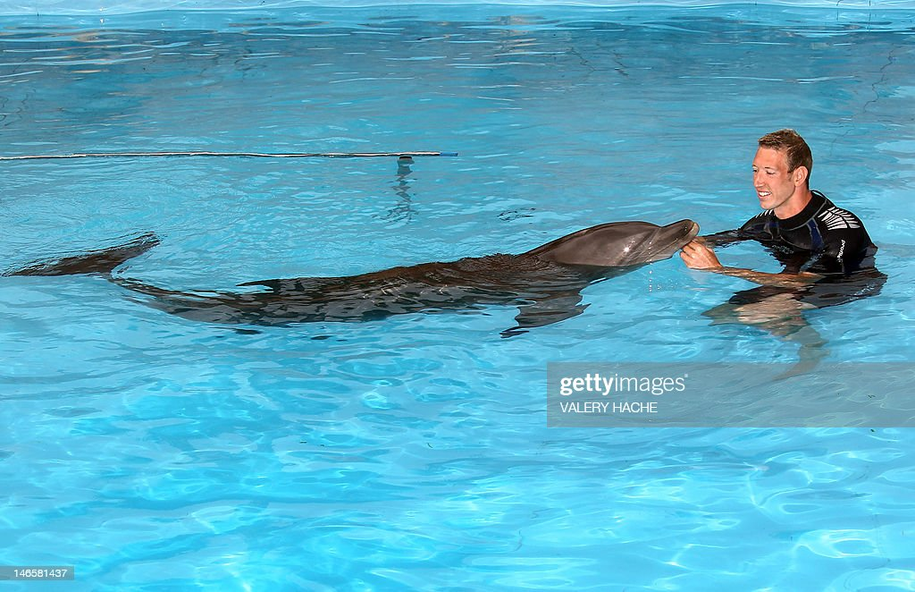 French swimmer Alain Bernard plays with a dolphin after swiming with these animals at Marineland, an animal exhibition park, on June 20, 2012 in Antibes, southern France. Alain Bernard is qualified for the 2012 Summer Olympic Games in London next July. AFP PHOTO / VALERY HACHE