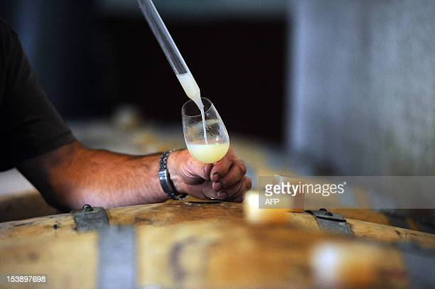French wine owner and producer Philippe Pontie extracts pressed grape juice from a barrel in Prayssac in the French southwestern wine producing...