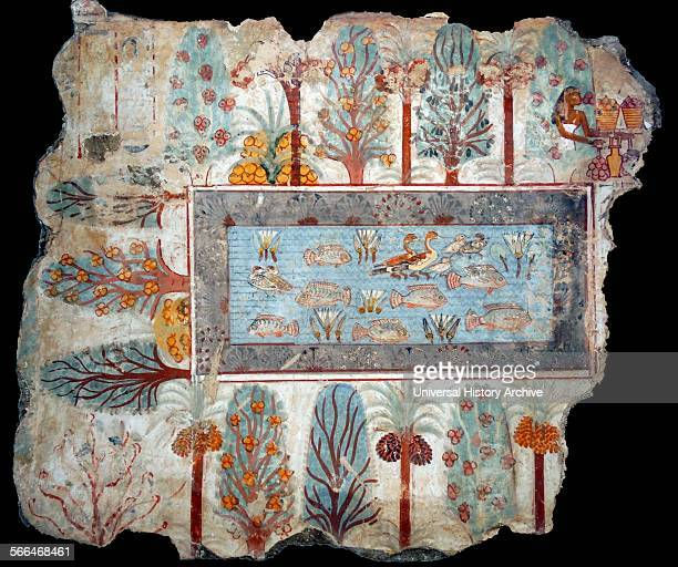 Fresco from the tomb of Nebamun shows a pool in a garden that might have belonged to Nebamun The pool is full of birds lotus flowers and tilapia fish...
