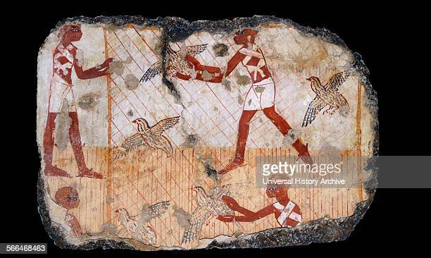 Fresco from the tomb of Nebamun shows men catching Quails with a net Thebes Egypt 18th Dynasty around 1350 BC