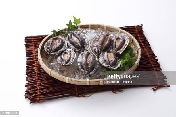 Fresh Abalones