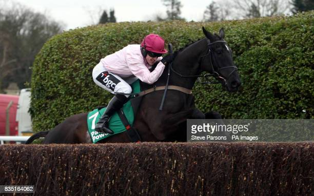 Fresh Air And Fun ridden by A P McCoy wins The Paddypowercom Handicap Steeple Chase during the Paddy Power Imperial Cup Day at Sandown Park...