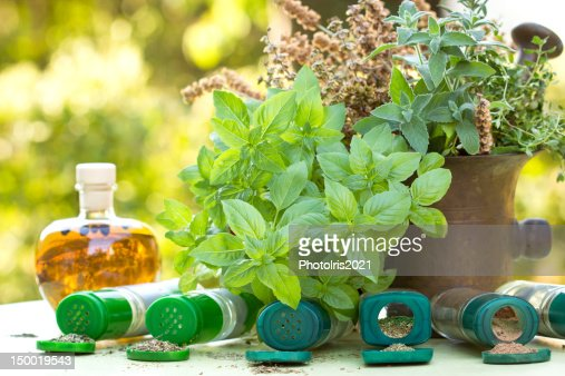 Fresh and dry herbs : Stock Photo