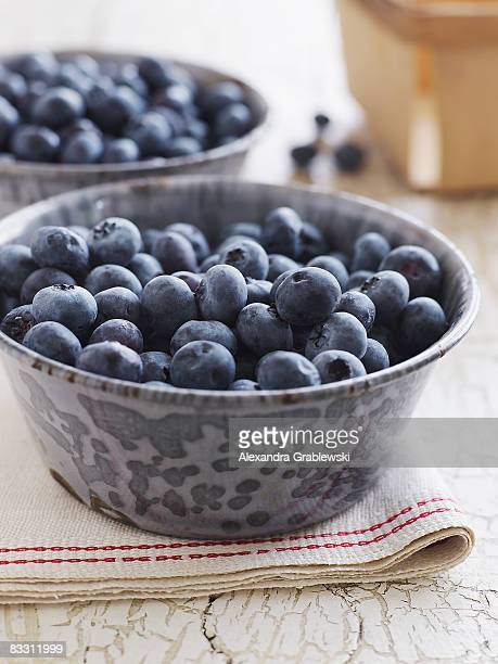 Fresh and organic Maine blueberries