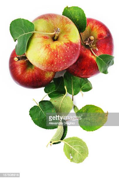 Frische Äpfel und verstreut Blätter, isoliert auf weiss