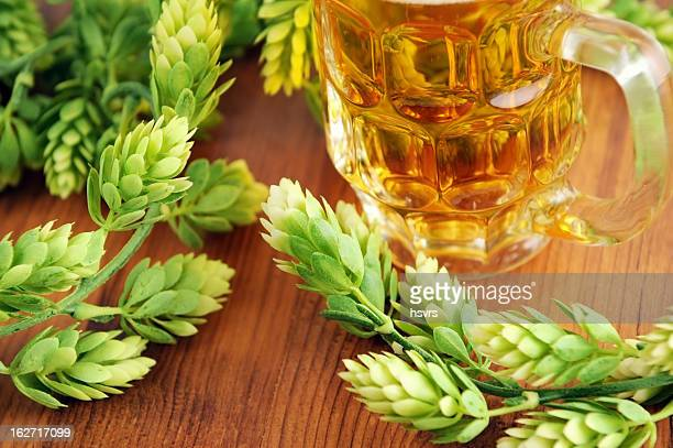 Bicchiere di birra fresca e hop tipica per l'Oktoberfest