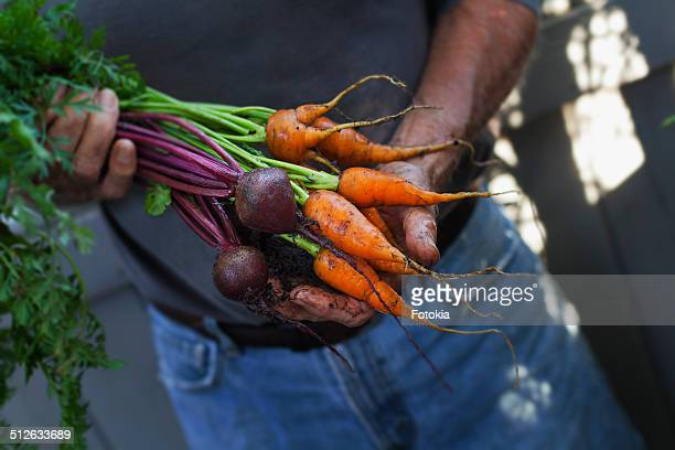 Fresh Beets & Carrots
