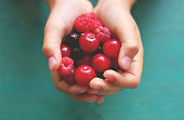 fresh berries in hands, cherry raspberry