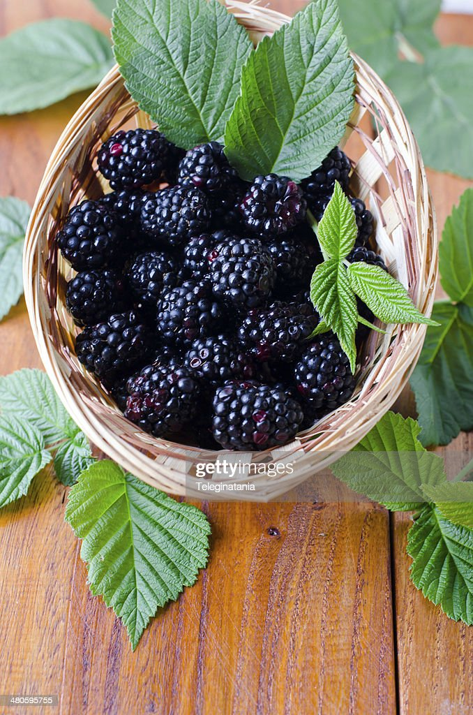 Fresh blackberries in a bowl : Stock Photo