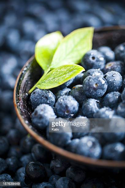 Fresh Blueberries (XXXL)