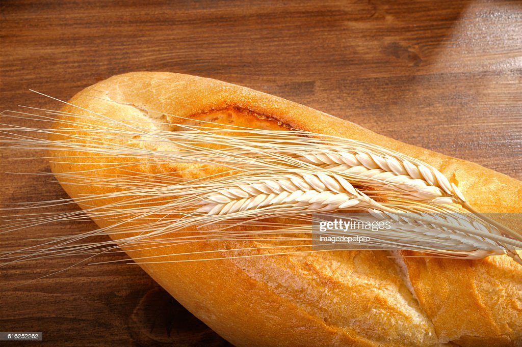 fresh bread and wheat : Stock Photo