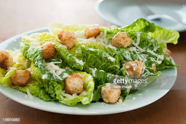 Fresh caesar salad on plate