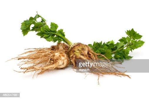 fresh celery : Stock Photo