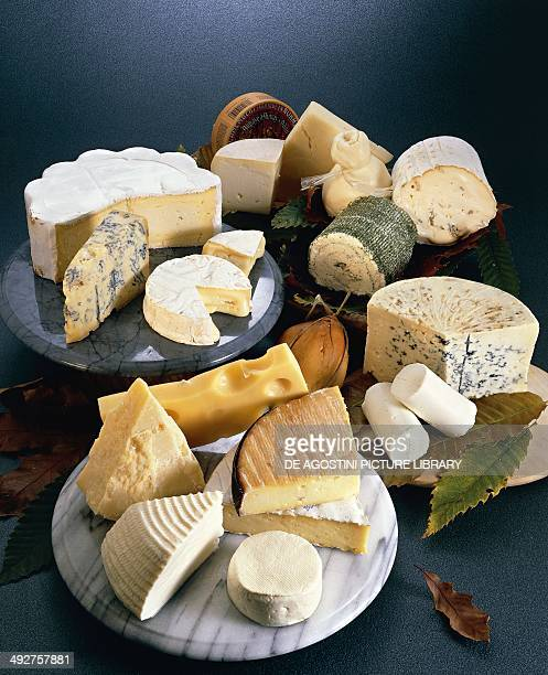 Fresh cheeses semihard and blue cheeses