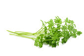 Fresh Chervil bunch isolated on white background