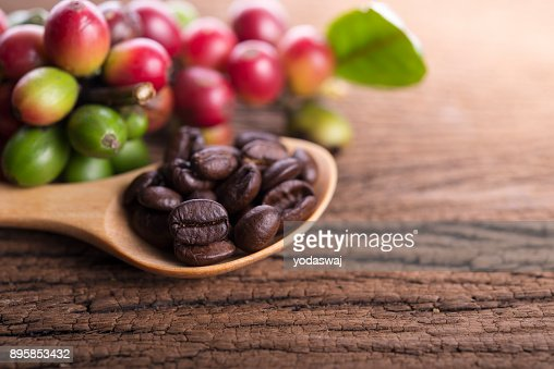 fresh coffee beans and roasted coffee beans arabica strong blend in spoon on wooden background : Stock Photo