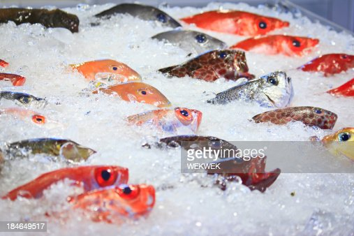 Fresh colorful tropical fish at the market, Taiwan