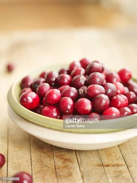 Fresh Cranberries in Bowl