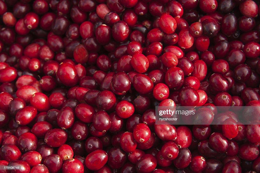 FRAIS fond de Cranberry : Photo